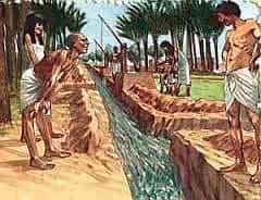 trowbridge plumbers egypt